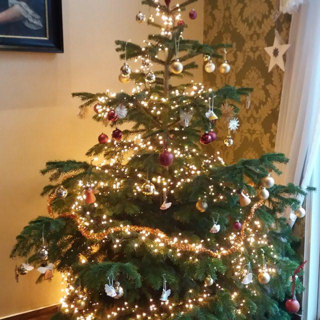 Die Weihnachtsbäume wurden geschmückt und die Krippen aufgebaut (11. Dezember 2020)
